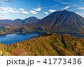 社山稜線の紅葉と男体山・中禅寺湖の眺め 41773436