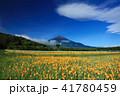 富士山 ポピー 花の都公園の写真 41780459
