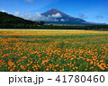 富士山 ポピー 花の都公園の写真 41780460