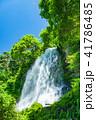 水しぶき 乙女滝 初夏の写真 41786485
