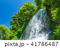 乙女滝 水しぶき 滝の写真 41786487