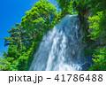 水しぶき 乙女滝 初夏の写真 41786488