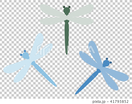 Dragonfly 41793852