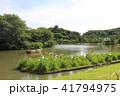 初夏の三溪園三重塔 横浜 神奈川県 41794975
