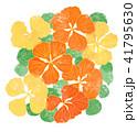 黄色とオレンジのナスタチウムの花 41795630