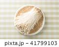 エノキ 41799103