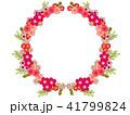 花 フレーム 植物のイラスト 41799824