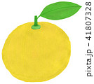 果物 フルーツ 果実のイラスト 41807328