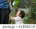 家族 幼児 園児 赤ちゃん 1歳 41808219