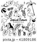Tropical Summer Illustration pack 41809186