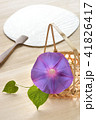 朝顔 夏 植物の写真 41826417