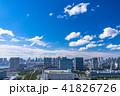 お台場 都市風景 都市の写真 41826726