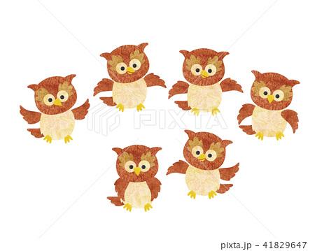 フクロウ(子供たち) 41829647