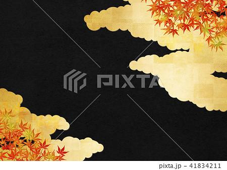 金の雲 黒の和紙 紅葉 41834211