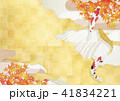 紅葉 和 鯉のイラスト 41834221