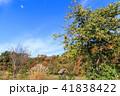 白川郷 世界文化遺産 合掌造りの写真 41838422
