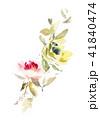 Flowers watercolor illustration 41840474