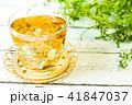 お茶 41847037