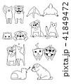 犬と猫のペア、しぐさセット4 線画 41849472