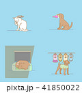 ねこ ネコ 猫のイラスト 41850022