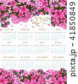 お花 フラワー 咲く花のイラスト 41850849