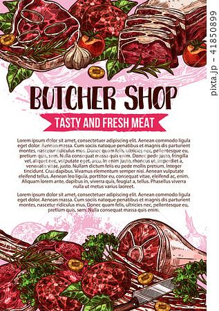 Butcher shop vector sketch meat poster 41850899