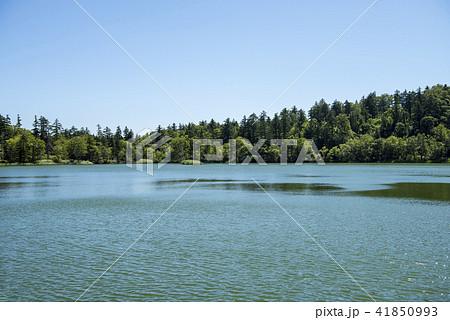 利尻礼文サロベツ国立公園 41850993