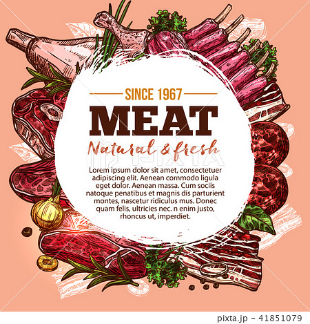 Vector sketch poster for meat house delicatessen 41851079
