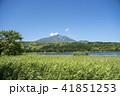 利尻礼文サロベツ国立公園 オタトマリ沼 利尻山の写真 41851253