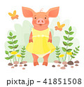 Piggy in dress 41851508