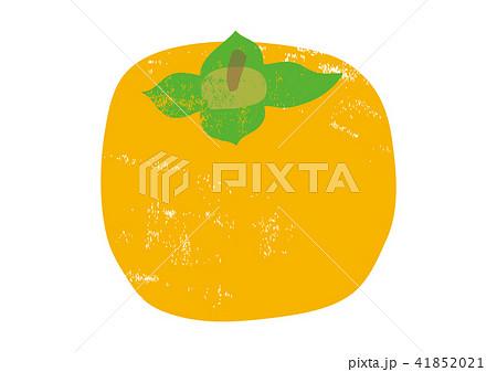 柿 水彩画 41852021