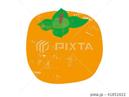 柿 水彩画 41852022