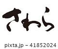 さわら 筆文字 文字のイラスト 41852024
