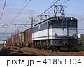 EF65形1000番台による貨物列車 41853304