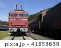碓氷峠鉄道文化むら(EF80-63) 41853639