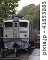 碓氷峠鉄道文化むら(EF30-20) 41853883