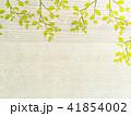 葉 木目 エコのイラスト 41854002