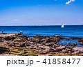 (神奈川県)観音崎公園の海岸で釣りをする人達 41858477
