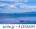 (神奈川県)観音崎公園の海 41858480