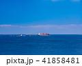 (神奈川県)観音崎公園の海 41858481