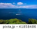 (神奈川県)観音崎公園の海 41858486