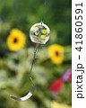 風鈴 夏イメージ 真夏 ふうりん 道具 季節イメージ 花 植物 風物詩 ガラス 夏休み 41860591