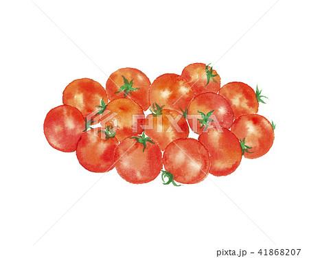 ミニトマト 野菜 41868207