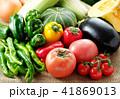 夏野菜 41869013