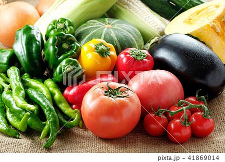 夏野菜 41869014