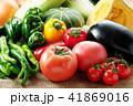 夏野菜 41869016