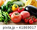 夏野菜 41869017