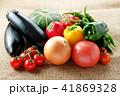 夏野菜 41869328