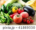 夏野菜 41869330