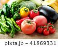 夏野菜 41869331